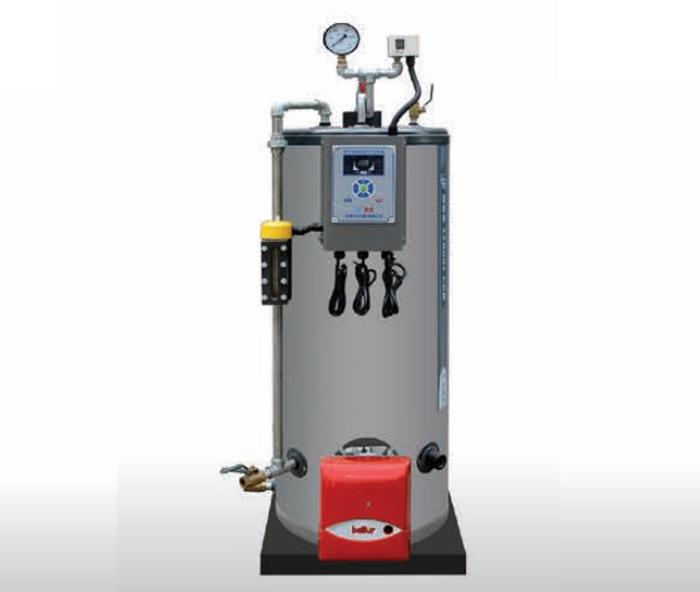 (燃气)蒸汽发生器